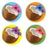 Untersetzer Kokosnuss mit Hibiskusblüte 8er Pack