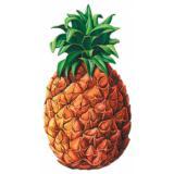 Wanddeko Ananas 60 cm