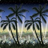 Wanddeko Honolulu bei Nacht 1,2 x 12,2 m
